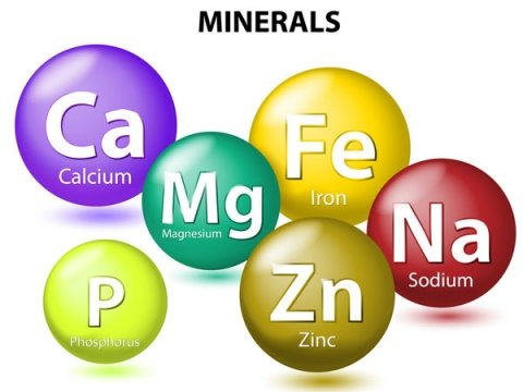Những khoáng chất cần thiết cho cơ thể. Ảnh:Boldsky